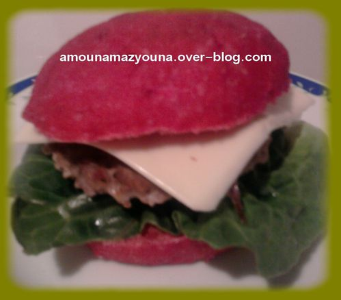 hamburger viande hachee12