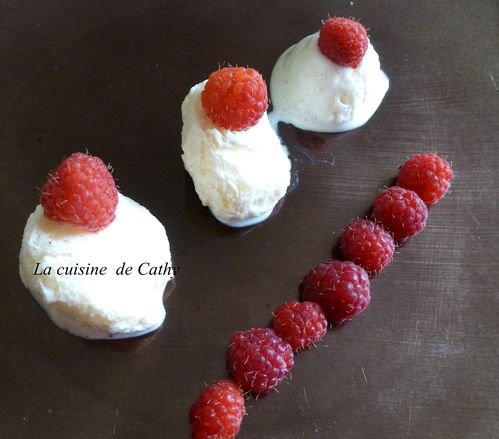 mousse-glacee-a-la-vanille--2-.JPG