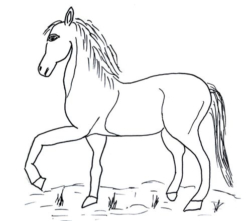 COLORIAGE-CHEVAL.JPG