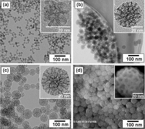 675px-Mesoporous_Silica_Nanoparticle.jpg