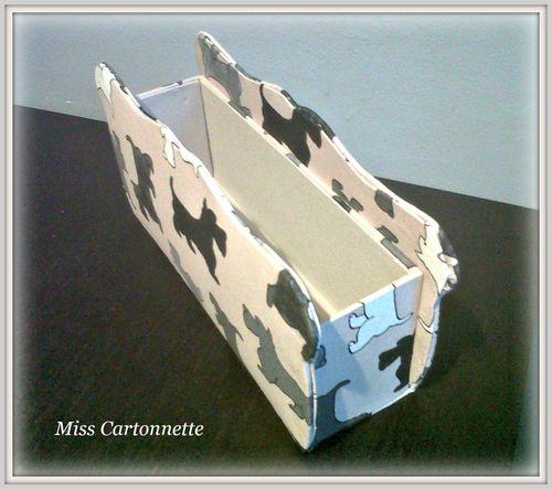 Miss Cartonnette
