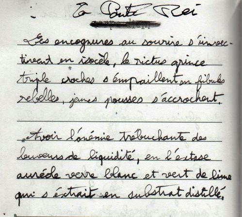 carnet-écriture9
