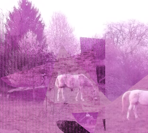 cheval-001.png