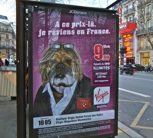 affiche Virgin mobile Depardieu chien