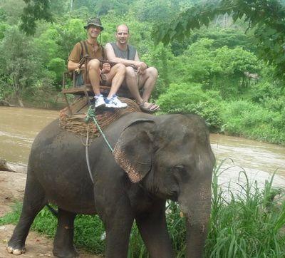 elephant-t-et-creduit