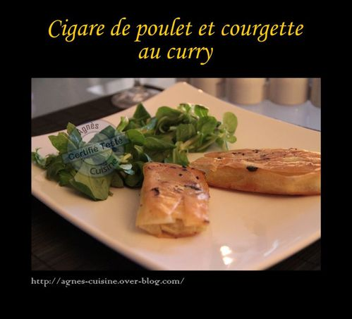 cigare poulet courgette