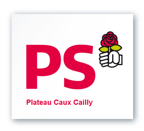logo ps 1272476317