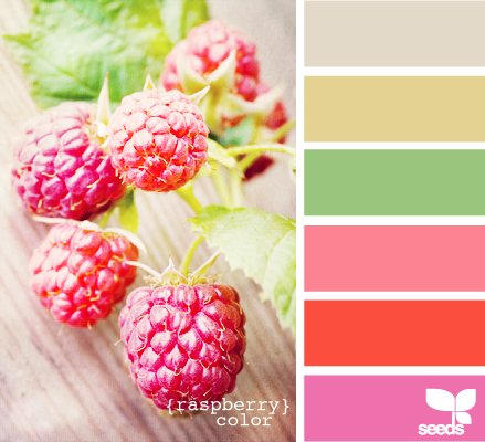 raspberrycolor625.png