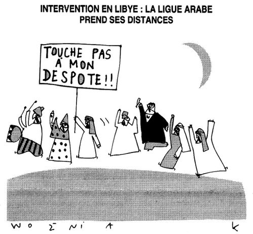 Intervention-en-Lybie---La-ligue-arabe-prend-ses-distances-.jpg