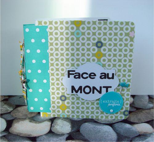 face_au_mont_couverture.jpg