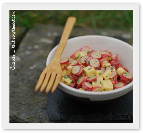 salade radis gouda