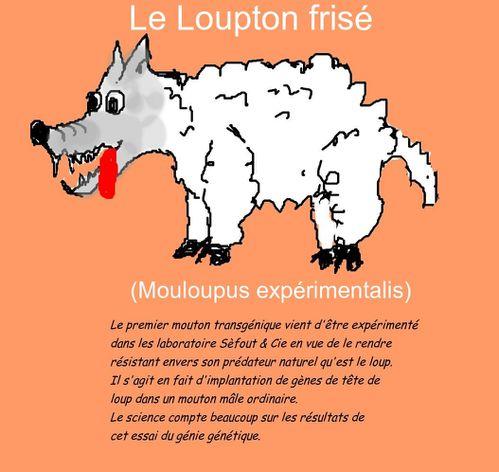 Loupton ou mouloup