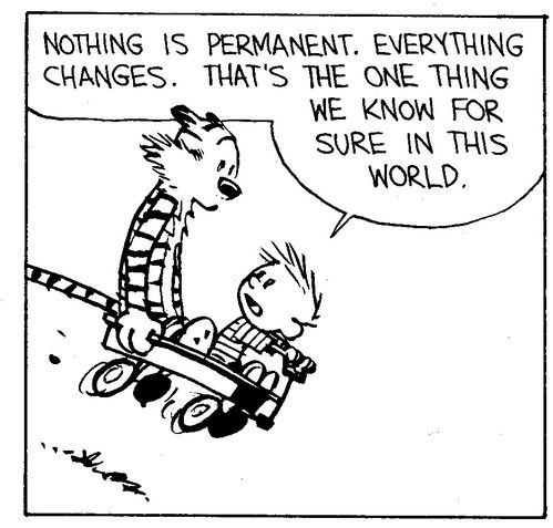 calvin&hobbes everything changes