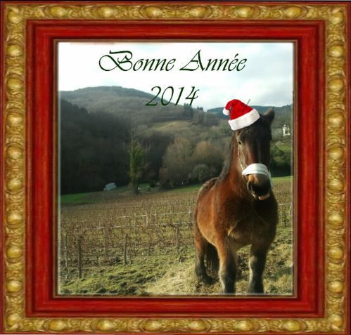 bonne-annee2014.jpg