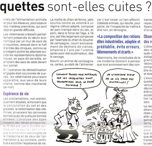 croquettes-article.jpg