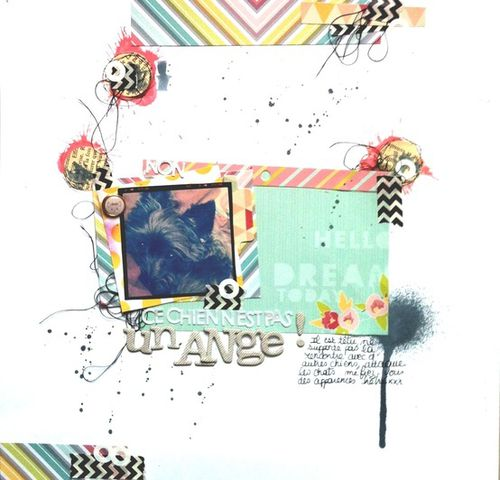 pasunange-copie-1.jpg