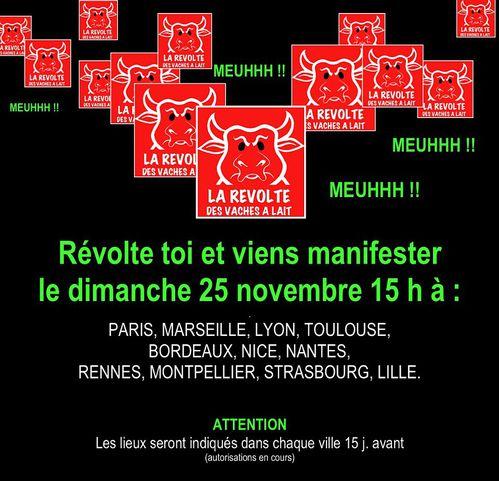 les-Vaches-a-lait-manif-25.11.12.jpg