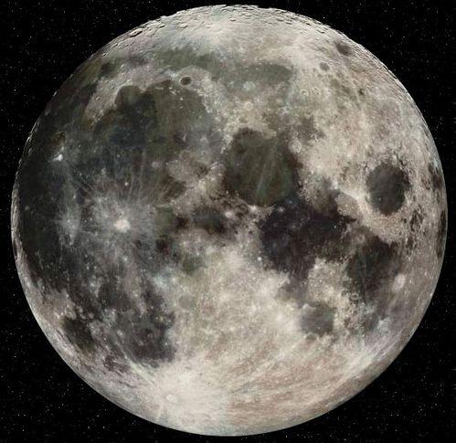 luna-0241.jpg