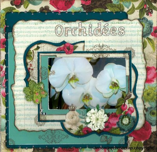 page-orchidee-copie-1.jpg