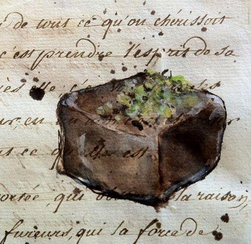 Chocolat-pistache-2-LR.jpg