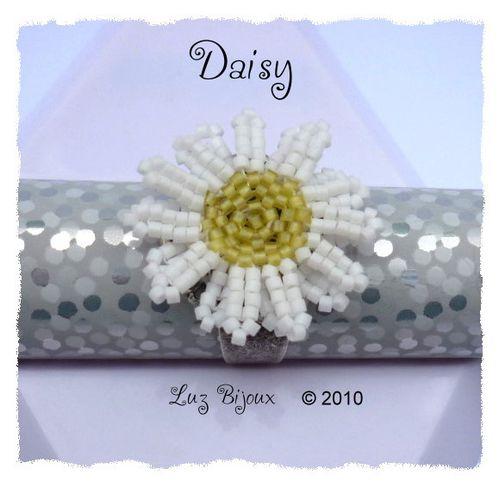 Daisy 001 mai2010 lzbjx