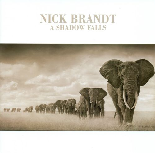 Nick-Brandt-exhibition-1.jpg