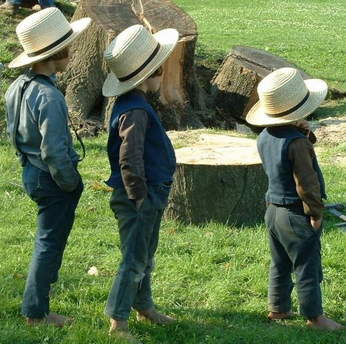 enfants amish