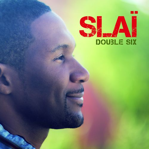 SLAI-Couv-Double-six.jpg