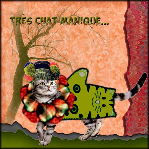 chat manique1