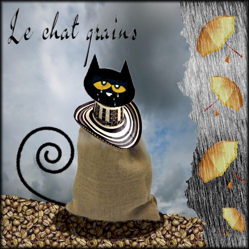 le chat grains 1