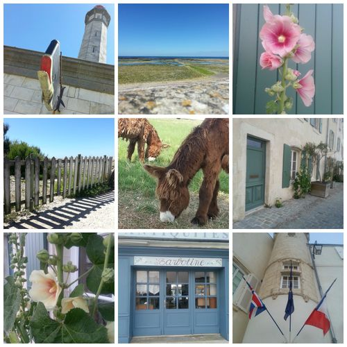 PicMonkey Collage-copie-12