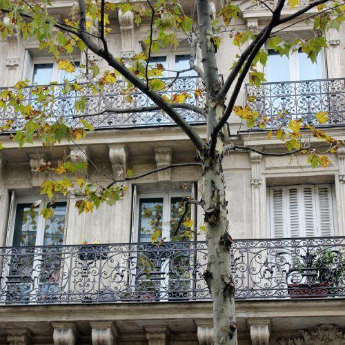 rue-des-martyrs-040.JPG