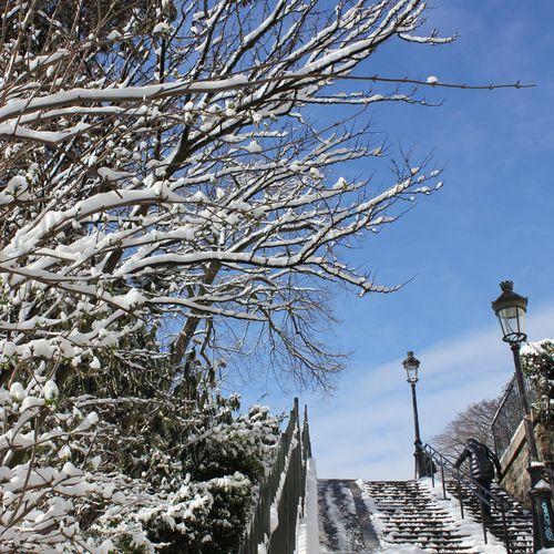 neige13mars-067.JPG
