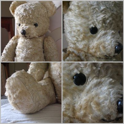 ours-peluche.jpg