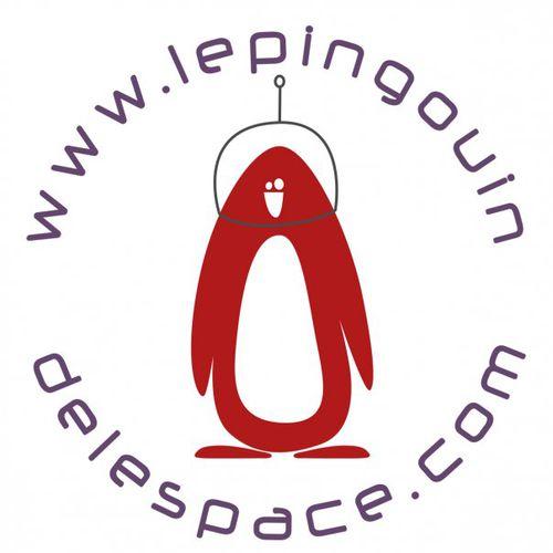 le-pinguoin-de-l-espace.jpg