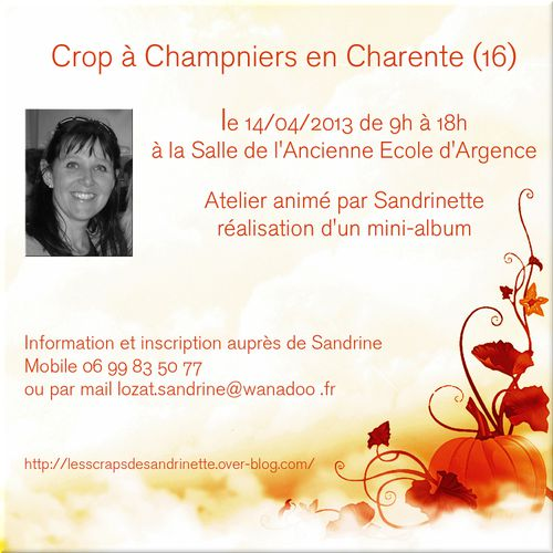 affiche sandrinette7