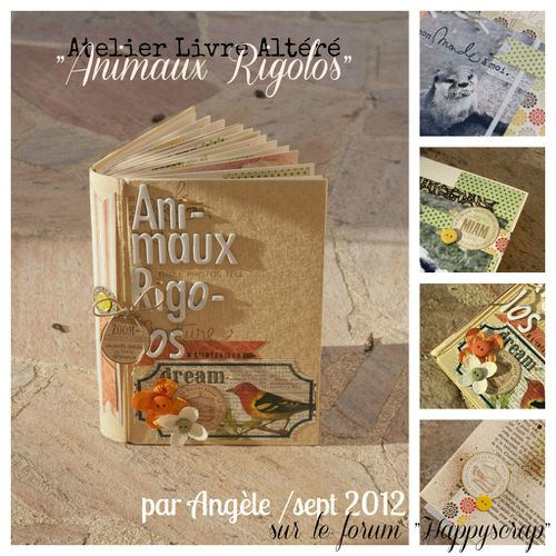 livre-altere-Collage.jpg