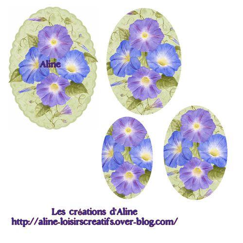 Fleurs-bleues.jpg