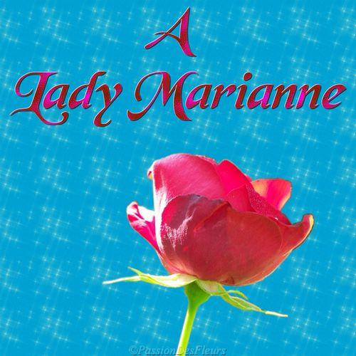 001rose-lady-marianne.jpg