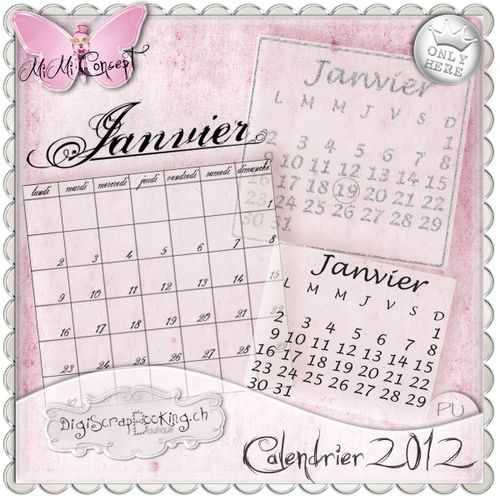 MiMiConcept-calendrier-2012--pv.jpg