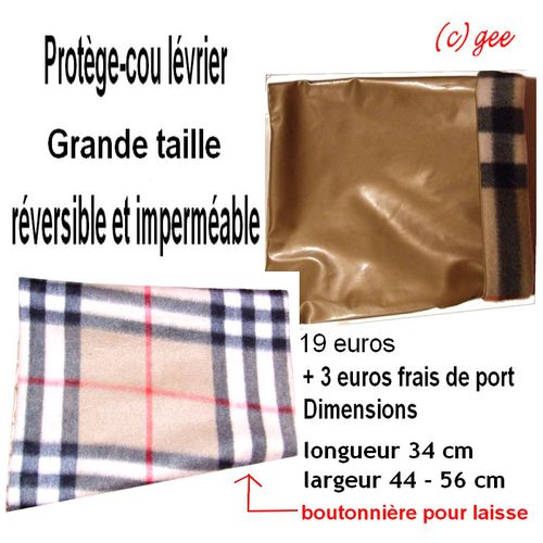 protege-cou-galgos-ethique-europe-levrier-grande-taille-3.jpg