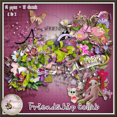 bcf friendship preview