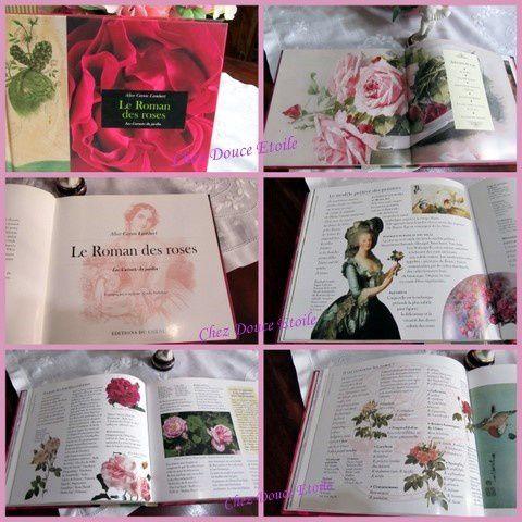 des Roses et encore des roses