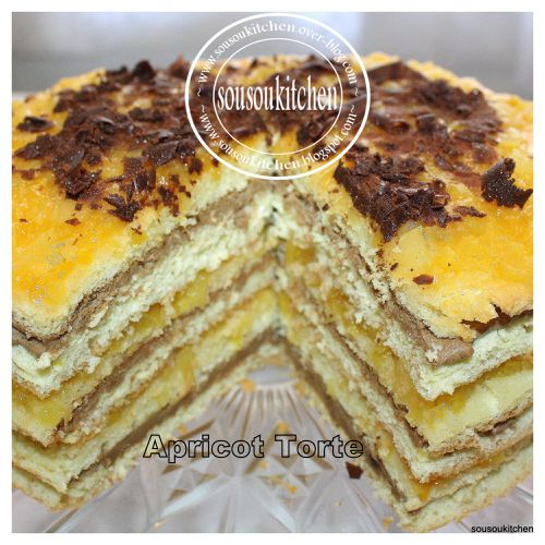 2010-03-30-apricot-torte.jpg