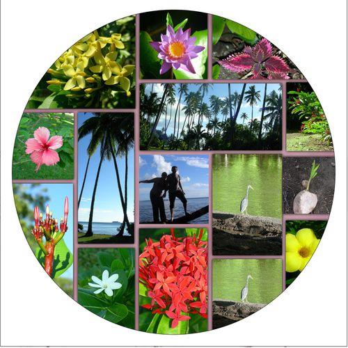 jardin-bot1.jpg