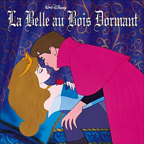 Image result for la belle au bois dormant