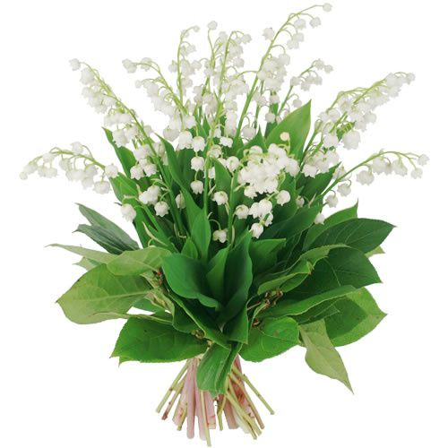 bouquet-muguet-eve.jpg
