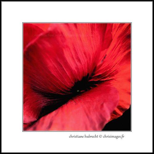 Aquarelles 6471-1280-aqua