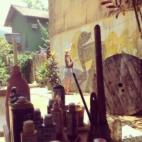 miss-van-brazil 0648