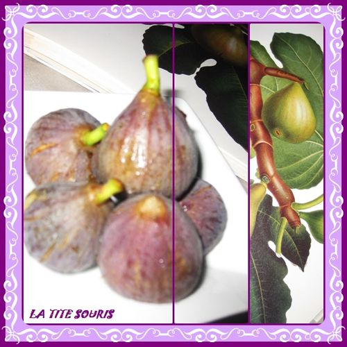 FIGUES 2